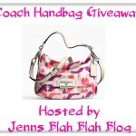 Coach Handbag Giveaway 150x150 Free Blogger Opportunity | Glass Handbag Giveaway