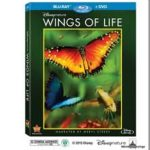 Disney's Wings of Life: Must See!