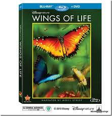 Disney's Wings of Life