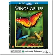 Disney's Wings of Life