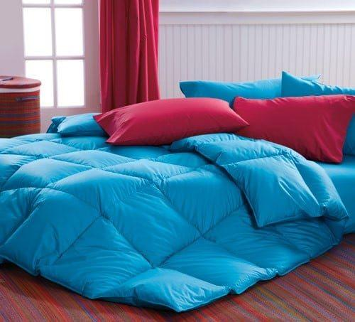 Blue Comforter Cuddledowns, Vibrant Bedspreads and Comforters   OH MY!