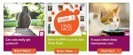 Pet360 Topic Email 07 30 14 Combo top 150x62 4 Ways To Show Your Dog You Love Them & #FREE Smaple of Purina One®