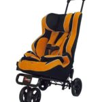 Zoomer & Sit n Stroll GREAT for Small & Special Needs Children