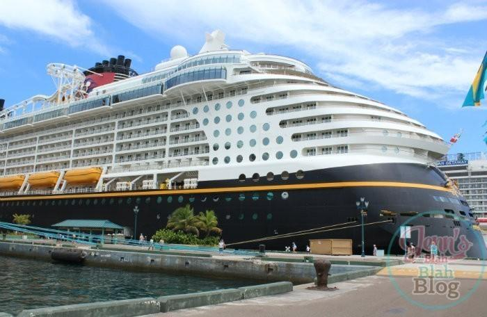 About The Disney Magic