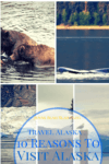Visit Alaska 10 reasons to visit Alaska 100x150 The Best Family Attractions in Florida