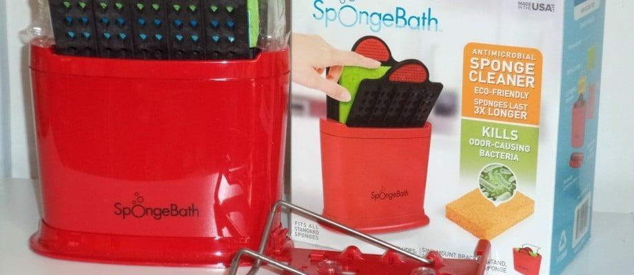 Is Your Sponge Clean?