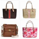 MOnthly Coach Handbag Giveaway (WW)