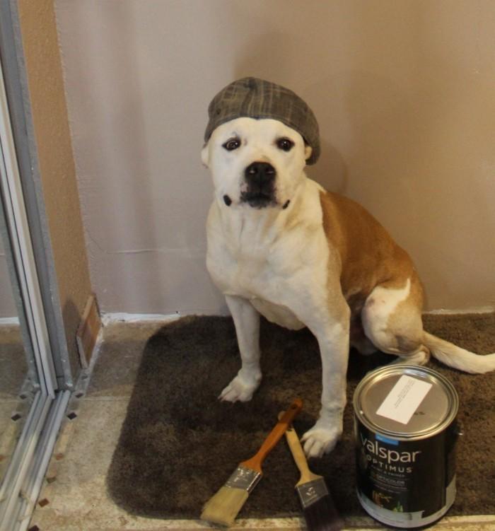 new bathroom paint