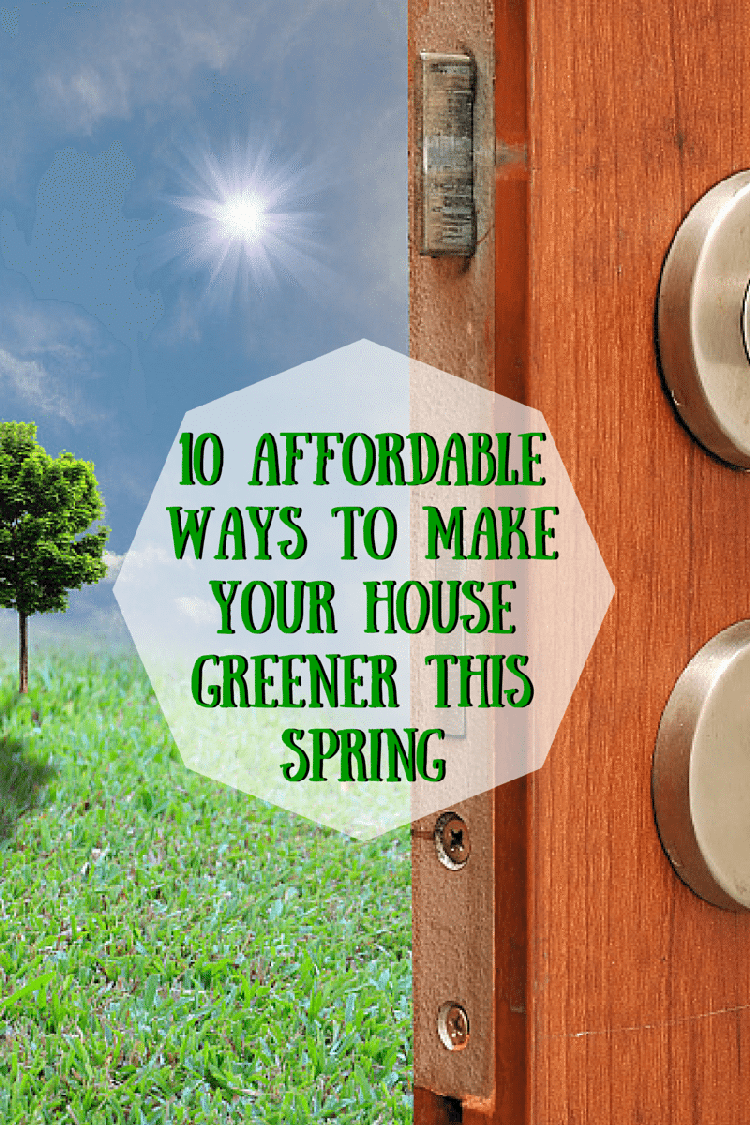 10 Affordable Ways To Make Your House Greener This Spring