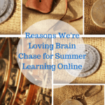 Reasons We Like Brain Chase for Summer Learning Online
