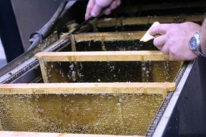 how to make honey