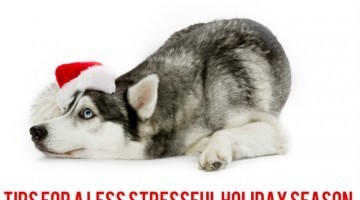 11 Tips for a Less Stressful Holiday Season