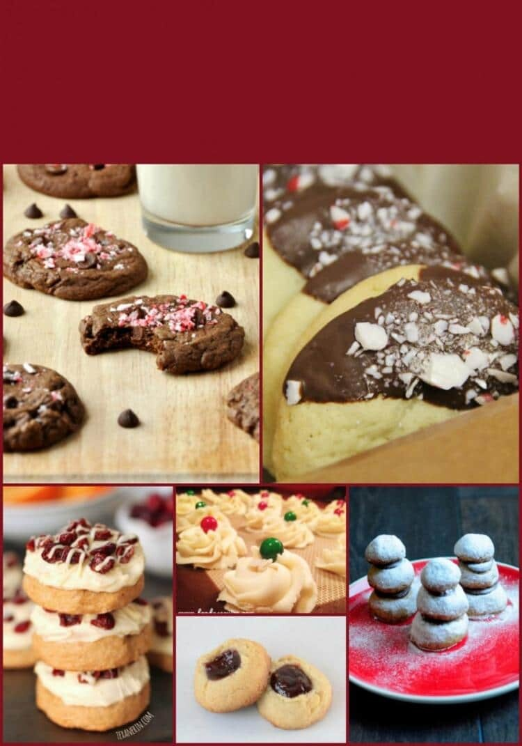 20 Awesome Christmas Cookie Recipe Ideas