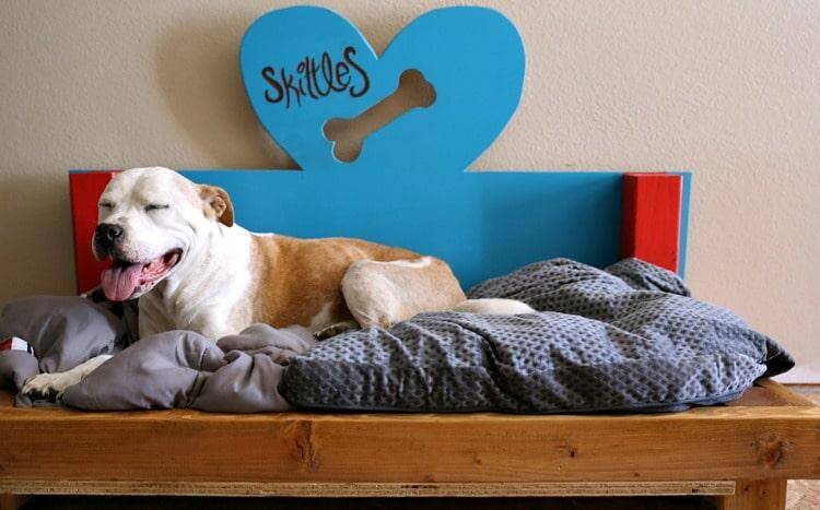 DIY Doggie Bed for Skittles the Pitbull 3