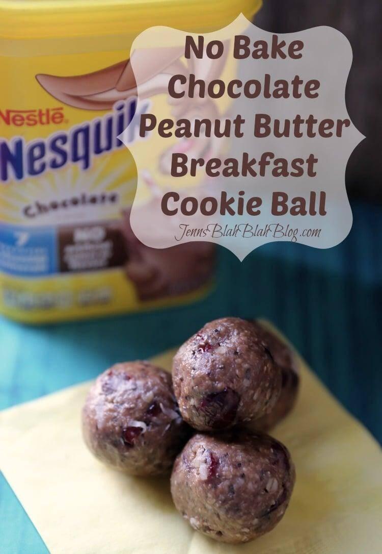 Chocolate Peanut Butter Breakfast Cookie