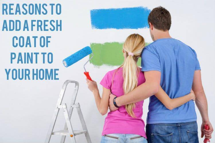 Reasons To Add A Fresh Coat of Paint to Your Home