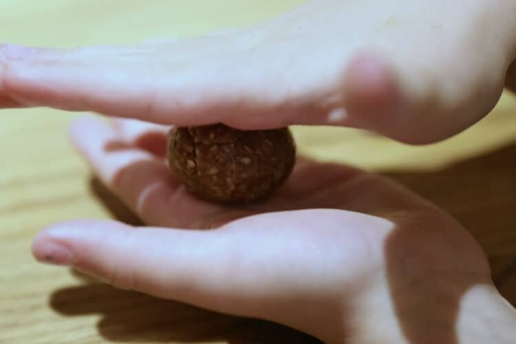 how to make bird seed balls with peanut butter