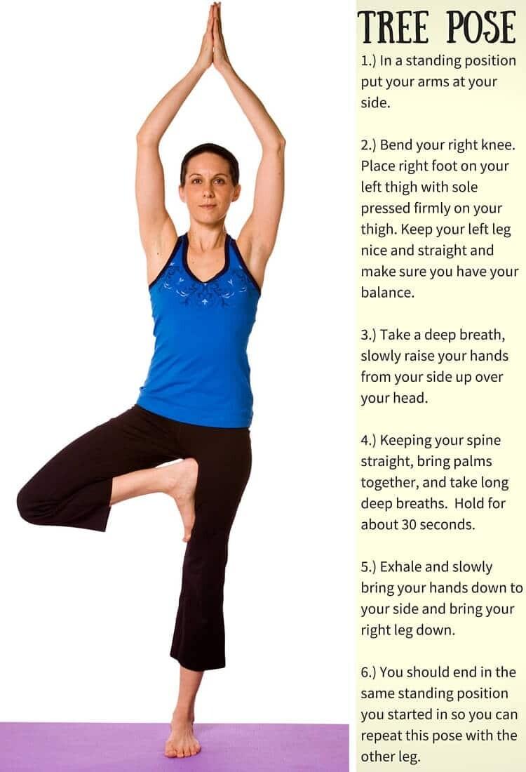 Yoga Position Tree Pose
