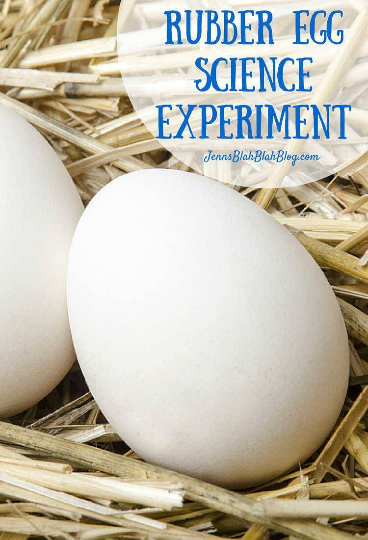 rubber egg lab essay Most of the egg experiment revolves around the use of vinegar, talk of the egg  osmosis lab, the bouncy egg and glowing egg all of them requires the use of.