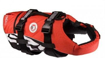 Now your Dog can Go and Swim Safely with EzyDog