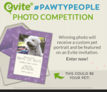 """Take The Quiz: """"Which Pet Party Fits You?"""" + Photo Contest"""