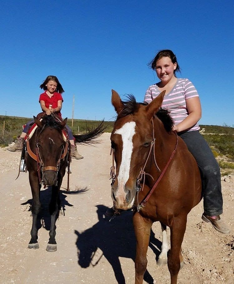 Going Big to Rescue Horses From Slaughter!
