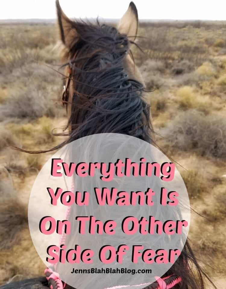 Everything You Want Is On The Other Side Of Fear