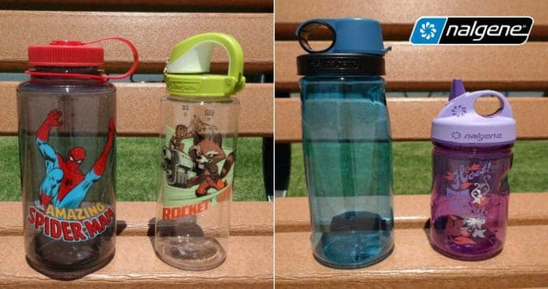 Are You Still Using Plastic Disposable Water Bottles? 10