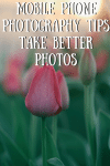 MobilePhone Photography Tips – Take Better Photos