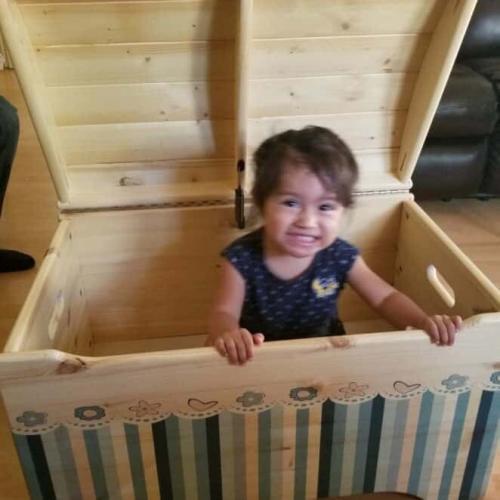 Little Colorado Customize Toy Box Review & Kickstarter 11