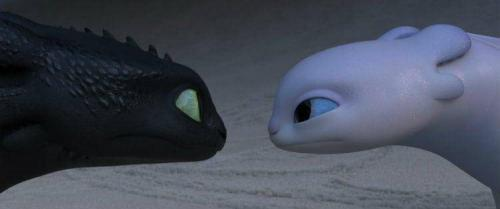 HOW TO TRAIN YOUR DRAGON: THE HIDDEN WORLD 11