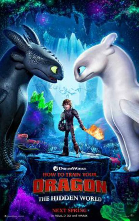 HOW TO TRAIN YOUR DRAGON: THE HIDDEN WORLD 2
