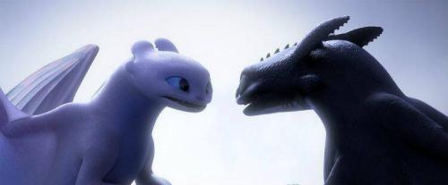 HOW TO TRAIN YOUR DRAGON: THE HIDDEN WORLD 4