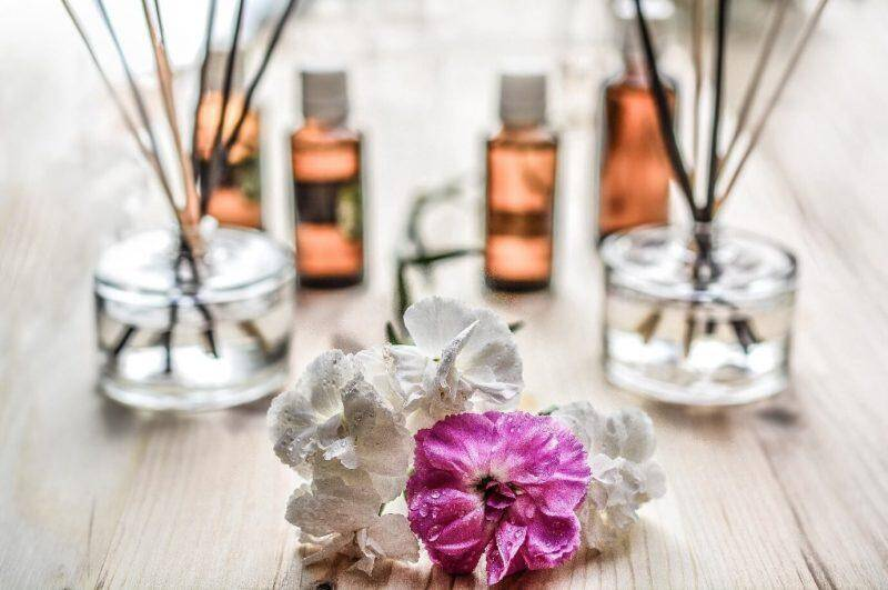 Secrets to Making Your Home Smell Fresh When You Have Pets