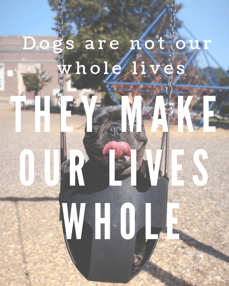 Dogs are not our whole lives they make our lives whole