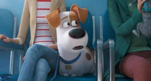 THE SECRET LIFE OF PETS 2 5