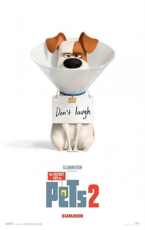 THE SECRET LIFE OF PETS 2 4