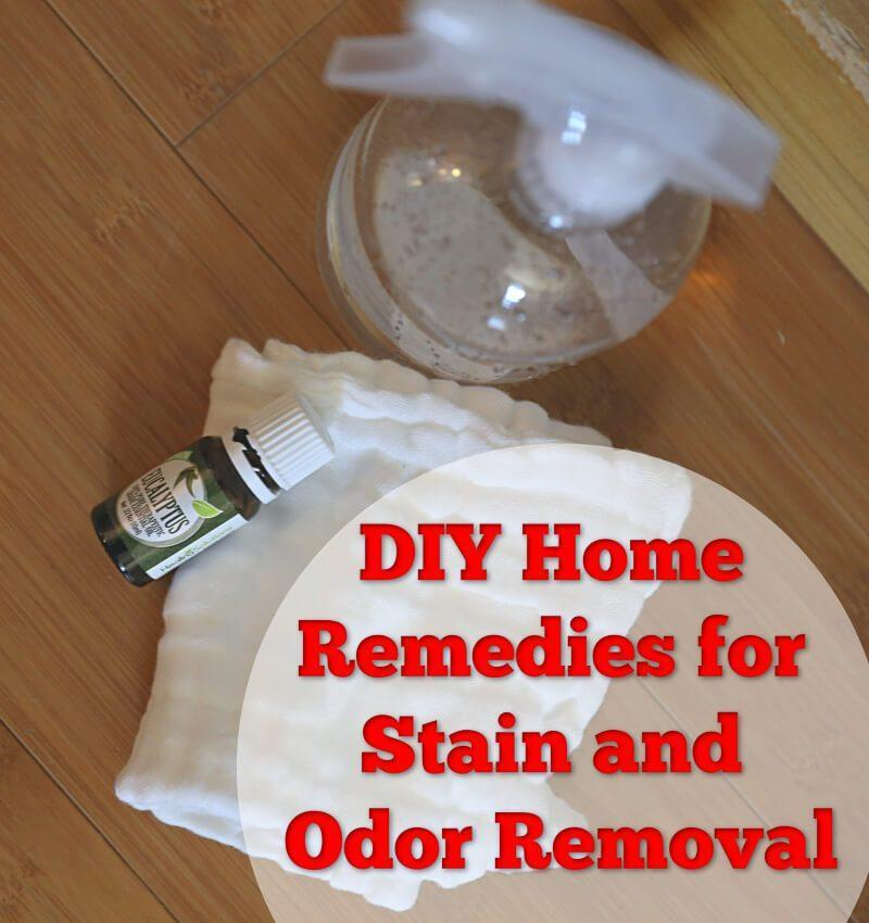 DIY Home Remedies for Stain and Odor Removal