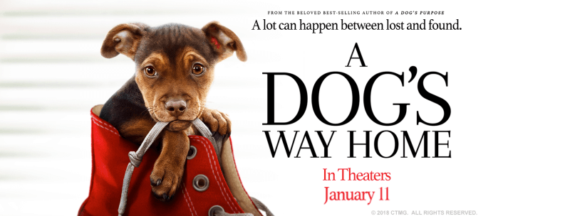 A Dog's Way Home Giveaway 1