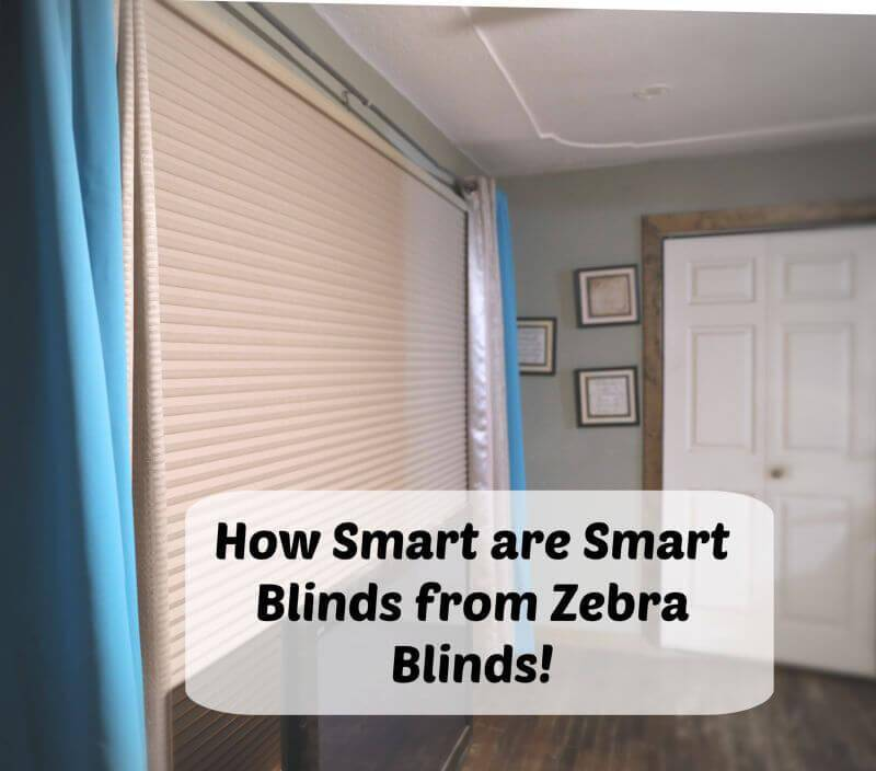 Smart Blinds from Zebra Blinds Are They a Smart Purchase?