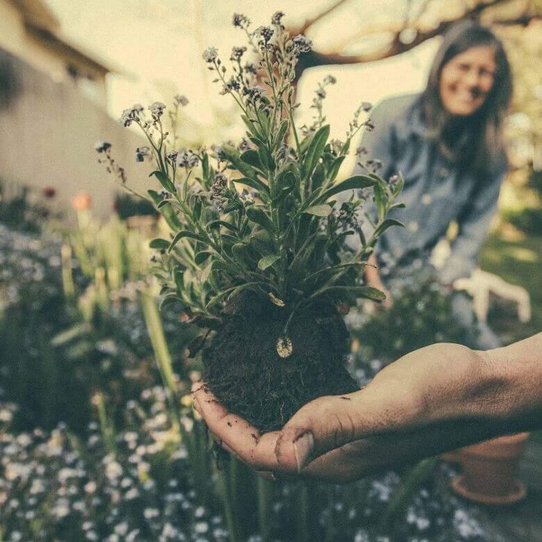 5 Tips For Starting A Garden 1