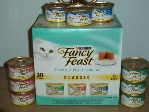 DSC00021 500x375 Finicky Eaters Select Fancy Feast