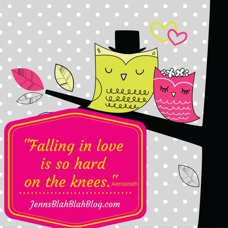 """Funny Valentine's Day Quotes """"falling in love is so hard on the knees"""" with pink and yellow owls cuddled in trees in the background"""