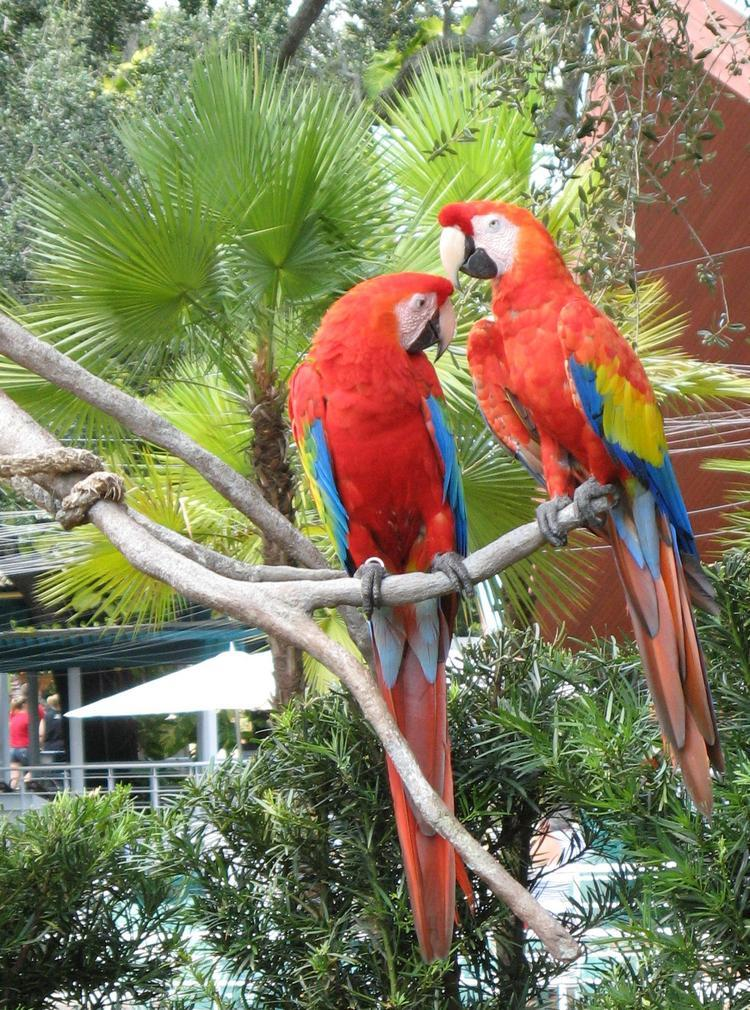 The Best Family Attractions in Florida The Best Family Attractions in Florida