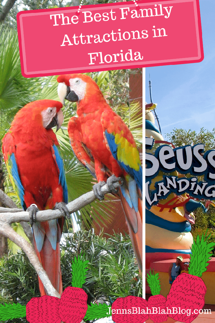 The Best Family Attractions in Florida
