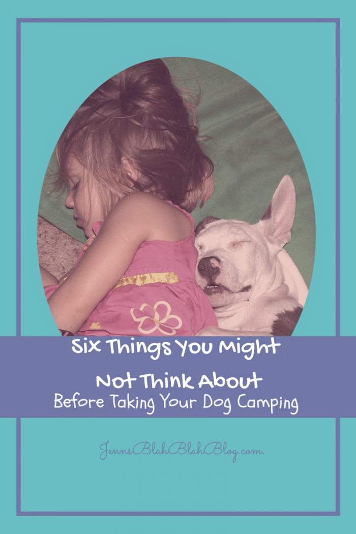 six things you might not think about before taking your dog camping